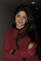 Poonam Kaur in Full Sleeveless Hot Red T-Shirt & Tight Jeans