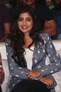 Actress Poonam Kaur Stills @ Nakshatram Audio Launch