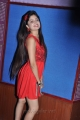 Actress Poonam Kaur Latest Hot Photos in Red Short Dress