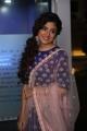 Telugu Actress Poonam Kaur Photos @ Kaluva Ugadi Calendar Launch