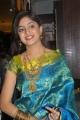 Poonam Kaur Silk Saree Stills
