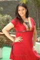 Actress Sindhu Tolani in Poovodum Puyalodum Movie Stills