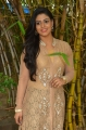 Actress Iniya @ Pottu Movie Launch Stills