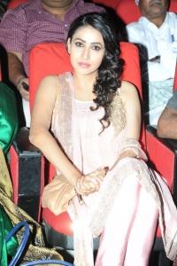 Actress Panchi Bora @ Prabhanjanam Movie Audio Launch Stills