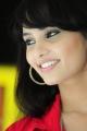 Actress Aarushi @ Prabhanjanam Movie Press Meet Stills