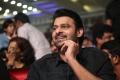 Actor Prabhas New Photos @ Mahanubhavudu Pre Release Function