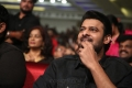 Hero Prabhas New Photos @ Mahanubhavudu Pre Release Function