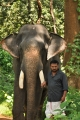 Prabhu Solomon @ Kumki On Location