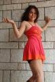 Uyir Ezhuthu Heroine Prachee Adhikari Hot Pics