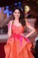 Actress Pragya Jaiswal Pics @ SIIMA Awards 2018 Red Carpet (Day 1)