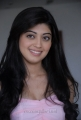 Telugu Actress Praneetha Cute Pics in Sleeveless Dress