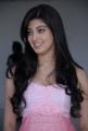 Praneetha Cute Pics at Sakuni Movie Success Meet