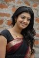 Praneetha Cute Saree Stills