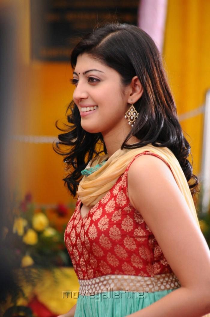 picture 256837 praneetha cute stills in saguni new