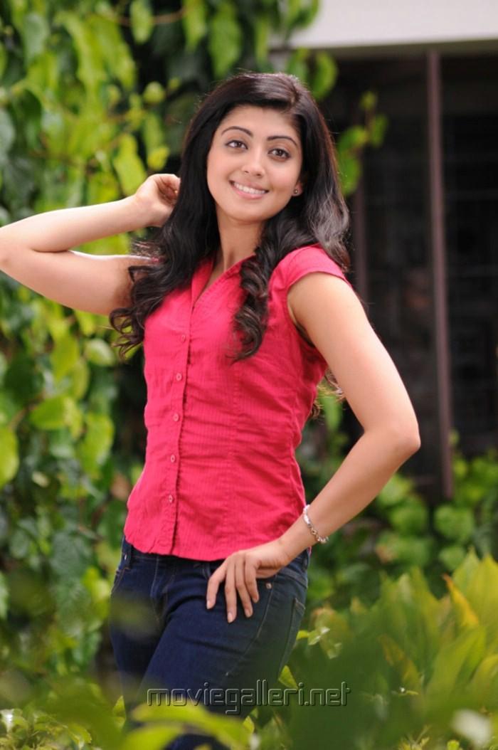 picture 256851 praneetha latest stills in saguni new