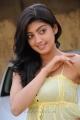 Praneetha Cute Stills in Saguni