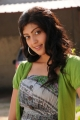Actress Praneetha Hot in Saguni Movie