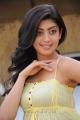 Praneetha Latest Stills in Saguni