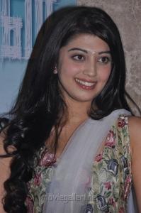 Tamil Actress Pranitha Latest Hot Stills