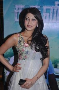 Tamil Actress Pranitha Latest Hot Photos