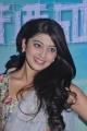 Actress Pranitha at Saguni Press Meet Function