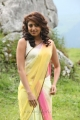 Actress Pranitha Hot Saree Photos in Attarintiki Daredi