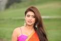 Attarintiki Daredi Pranitha Hot Saree Photos