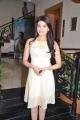 Tamil Actress Pranitha New Hot Pics