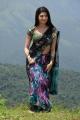 Actress Pranitha Hot in Saree Latest Stills