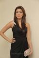 Pranitha Latest Hot Photos in Dark Brown Dress
