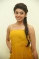 Actress Pranitha in Yellow Dress Stills