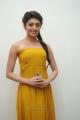 Telugu Actress Pranitha in Yellow Color Long Dress
