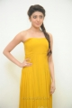 Actress Pranitha Subhash in Yellow Long Dress
