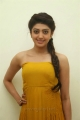 Actress Pranitha New Stills in Yellow Long Dress