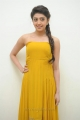 Telugu Actress Pranitha in Yellow Color Long Dress