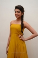 Telugu Heroine Pranitha in Yellow Color Long Dress