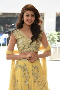 Actress Pranitha Subhash Photos @ Hello Guru Prema Kosame Success Meet