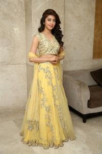 Actress Pranitha New Photos @ Hello Guru Prema Kosame Success Meet