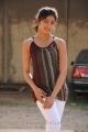 Actress Pranitha Hot in Saguni Movie Photos