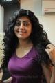 Saguni Actress Pranitha Stills