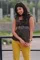 Actress Pranitha Stills in Saguni Movie