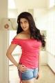 Pranitha Subhash Hot Portfolio Photoshoot Pics
