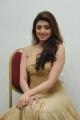 Telugu Actress Praneetha Stills in Long Golden Dress