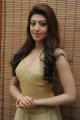 Actress Pranitha Subhash Stills in Long Golden Dress