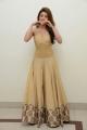 Gorgeous Pranitha Subhash posing in long golden dress