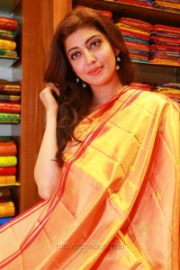 Actress Pranitha Subhash launches Videms Silks @ Vanasthalipuram Photos