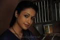 Madhuri Bhattacharya in Prasad Movie Stills