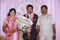 Sneha Weds Prasanna Marriage Reception for Actor and Actress