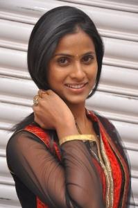 anchor_prashanthi_photos_anaganaga_platinum_disc_function_6a7bcfb