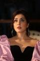 Raashi Khanna @ Prathi Roju Pandage 2nd Single Launch Stills